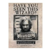 Harry Potter, Maxi Poster - Sirius Black