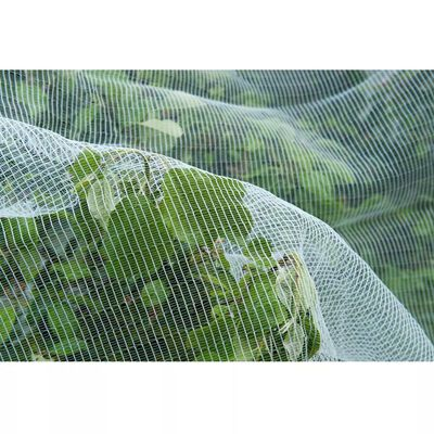 Natur Anti-insektsnett mot eplevikler-møll 6030450